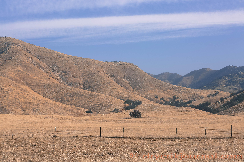 Image Result For Snake River Farms
